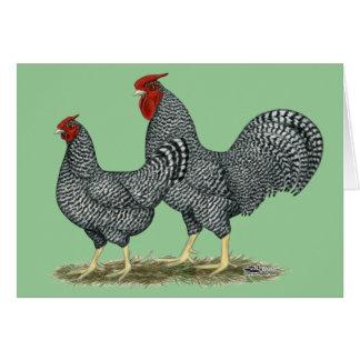 Dominique Chickens Card