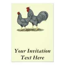 Dominique Chickens Invitation