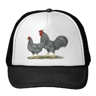 Dominique Chickens Trucker Hat