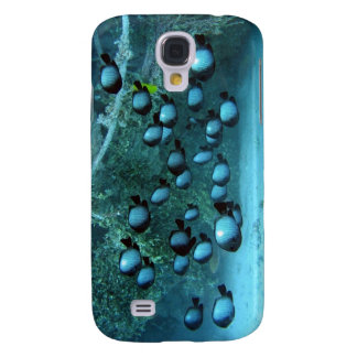 Domino Damsel Fishes Galaxy S4 Cover