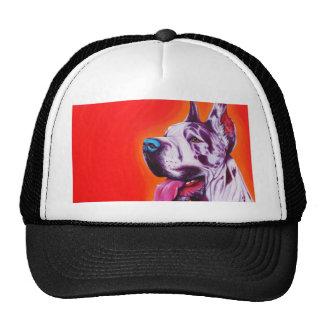 domino mesh hats