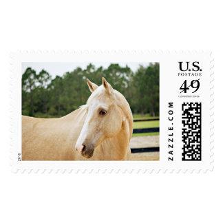 Domino Stamp