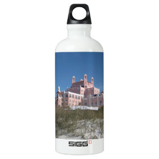 Don CeSar Aluminum Water Bottle