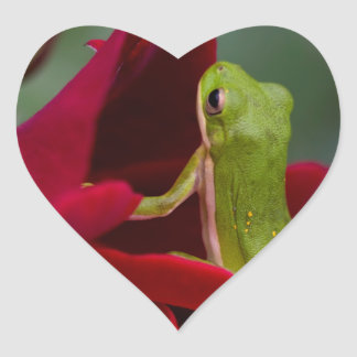 Don Juan Red Rose and Green Tree Frog Heart Sticker