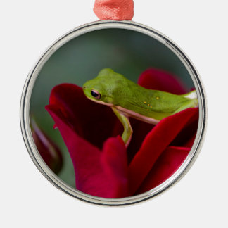 Don Juan Red Rose and Green Tree Frog Metal Ornament