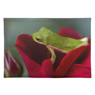 Don Juan Red Rose and Green Tree Frog Placemat