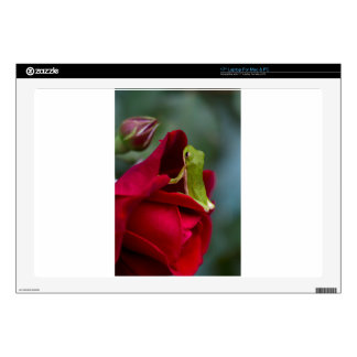 """Don Juan Red Rose and Green Tree Frog Skins For 17"""" Laptops"""