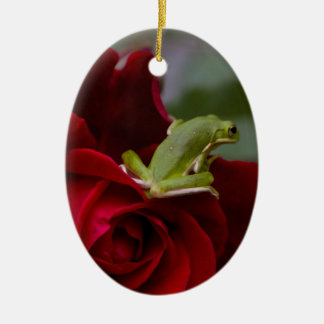 Don Juan Rose and Green Tree Frog Ceramic Ornament