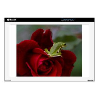 Don Juan Rose and Green Tree Frog Skin For Laptop