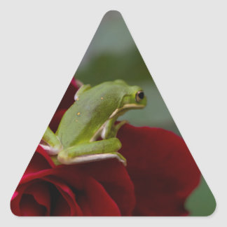 Don Juan Rose and Green Tree Frog Triangle Sticker