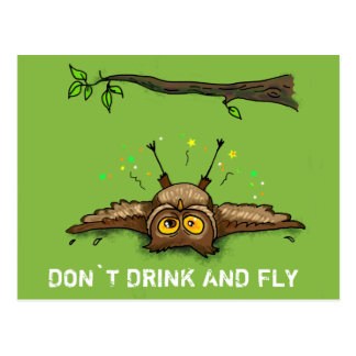 DON`T DRINK AND FLY POSTCARD