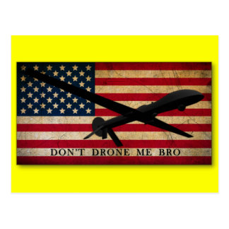 Don t Drone Me Bro Post Card