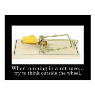 Don t get stuck in the rat race post cards