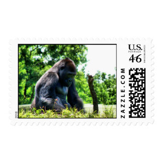 Don t Give Up Postage Stamp