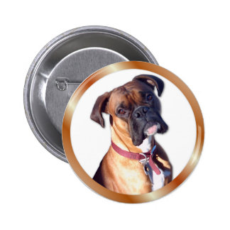 Don t Go Pinback Buttons