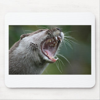 Don`t Mess With The Otter Mouse Pad