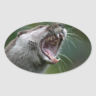Don`t Mess With The Otter Oval Sticker