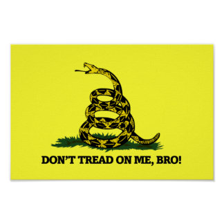 Don t Tread on me Bro Posters