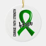 Donación de órganos de la esperanza 5 de la fe del adorno para reyes