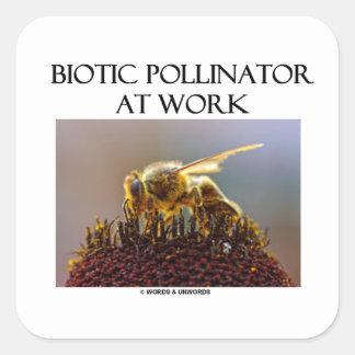 Donadora de polen biótica en el trabajo (abeja en calcomanía cuadradas