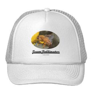 Donadora de polen del equipo (abeja en la flor ama gorro de camionero