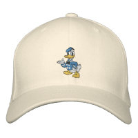 9fb55c2b4c0 Donald Duck. Hats   Hair Accessories