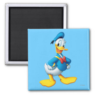 Donald Duck Pose 4 Magnets