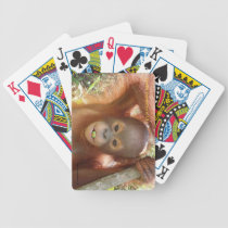 Donald Orangutan at Borneo Care Center Playing Car Bicycle Playing Cards