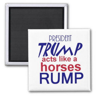 Donald TRUMP 2016 Magnet