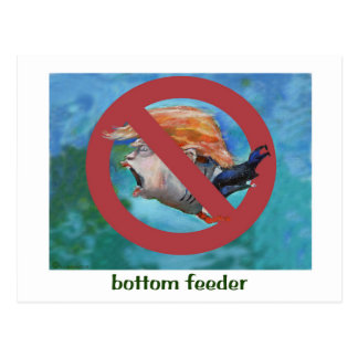 Donald Trump Bottom Feeder postcard