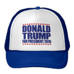 Donald Trump for President 2016 Blue and White Hat