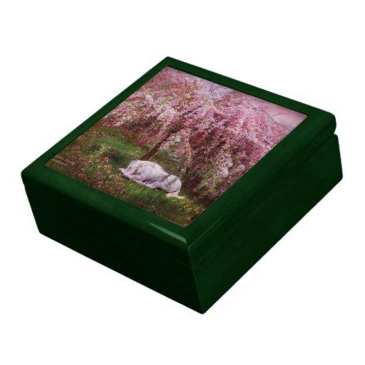 Donde caja de regalo ideal del arte del unicornio