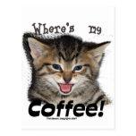 Donde está mi gato del café postal