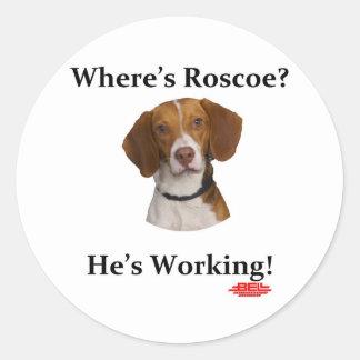 ¿Dónde está Roscoe? Pegatinas Redondas