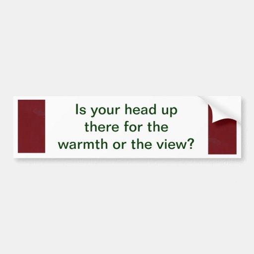 ¿Dónde está su cabeza? Etiqueta De Parachoque