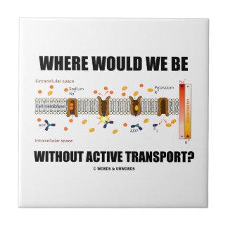 ¿Dónde estaríamos sin transporte activo? Tejas