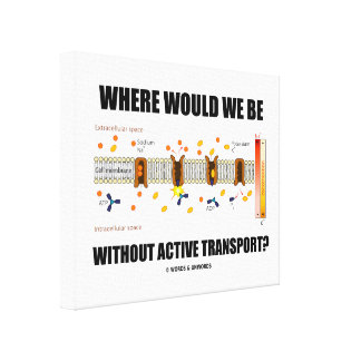 ¿Dónde estaríamos sin transporte activo? Lienzo Envuelto Para Galerías