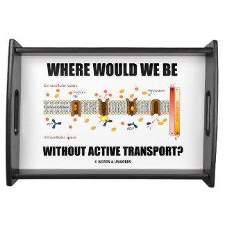 ¿Dónde estaríamos sin transporte activo? Bandeja