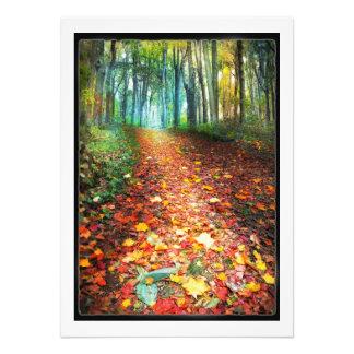 Donde las hojas recolectan, decoración de la caída fotografía