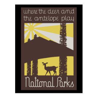 donde los ciervos y el antílope juegan tarjetas postales