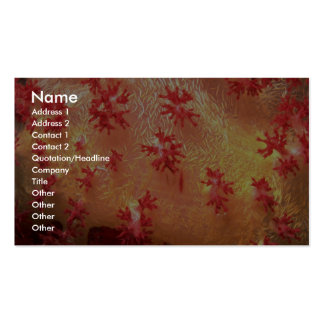 Dondronephthya soft coral from Papua, New Guinea Business Cards