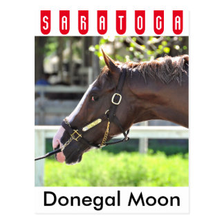 Donegal Moon Postcard