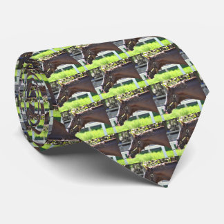 Donegal Moon Tie