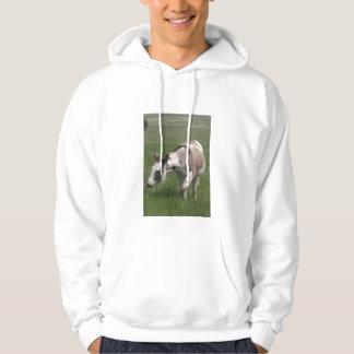 Donkey Adult Hooded Sweatshirt