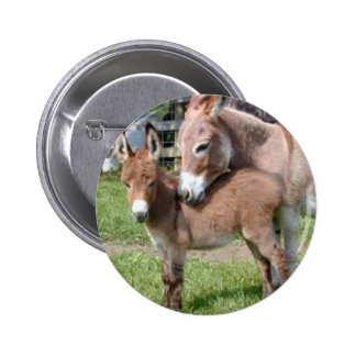 Donkey and Baby Pinback Button