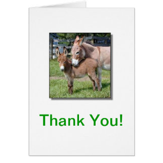 Donkey and Baby Thank You Card