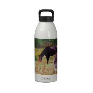 Donkey and horse in a Fall Field. Reusable Water Bottle