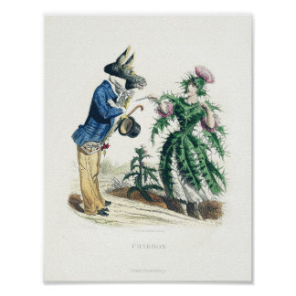 Donkey and Thistle Poster