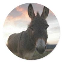 Donkey Art Classic Round Sticker