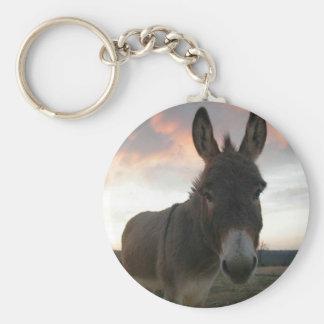 Donkey Art Keychains